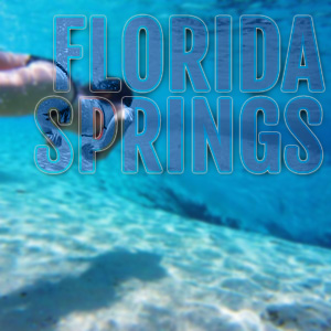 woman swimming to spring vent with words florida springs promoting florida springs on image
