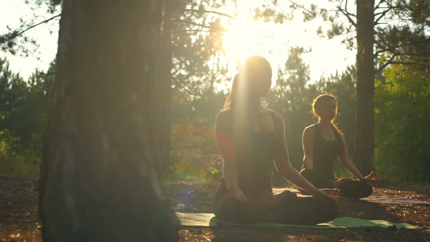 yoga in a forest