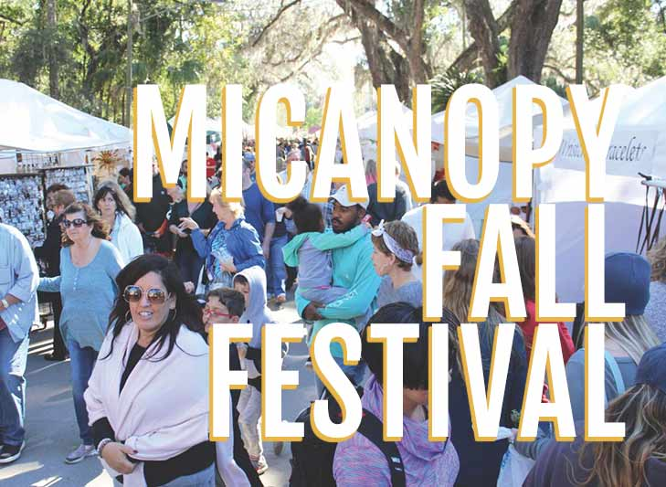 attendees visit booths at micanopy fall festival in florida