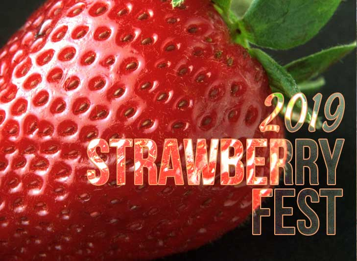 Strawberry Fest – Clay County