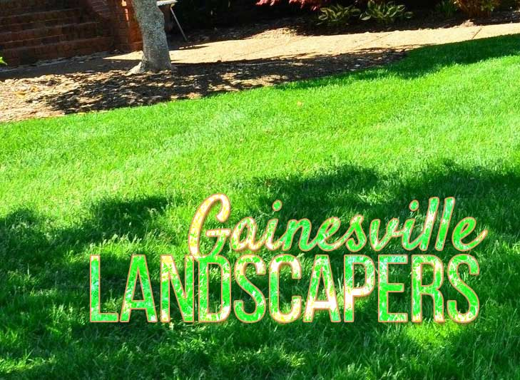 residential lawn in gainesville florida, landscapers in gainesville